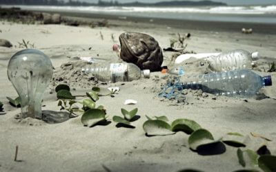 """""""CircularSeas"""": Plásticos del océano, convertidos en útiles para la industria marina"""